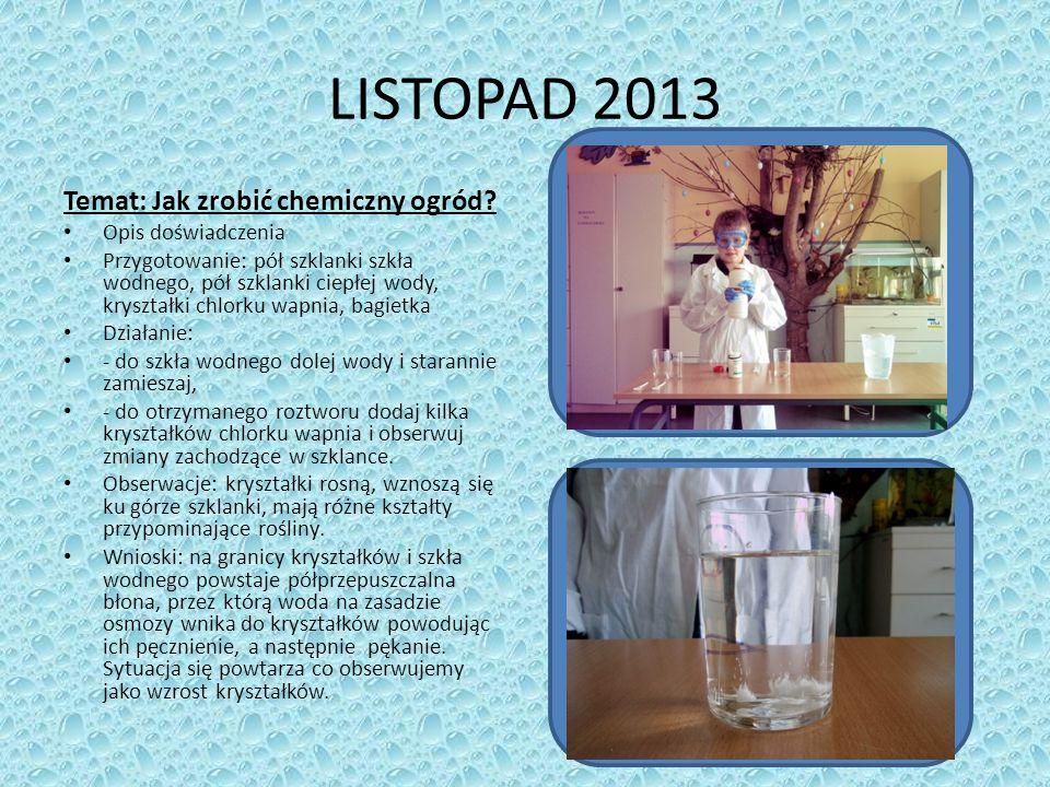 LISTOPAD 2013 Temat: Jak zrobić chemiczny ogród.