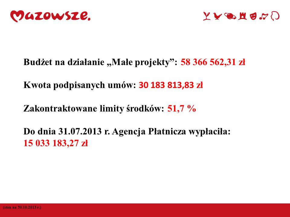 (stan na 30.10.2013 r.) Budżet na działanie Małe projekty: 58 366 562,31 zł Kwota podpisanych umów: 30 183 813,83 zł Zakontraktowane limity środków: 5