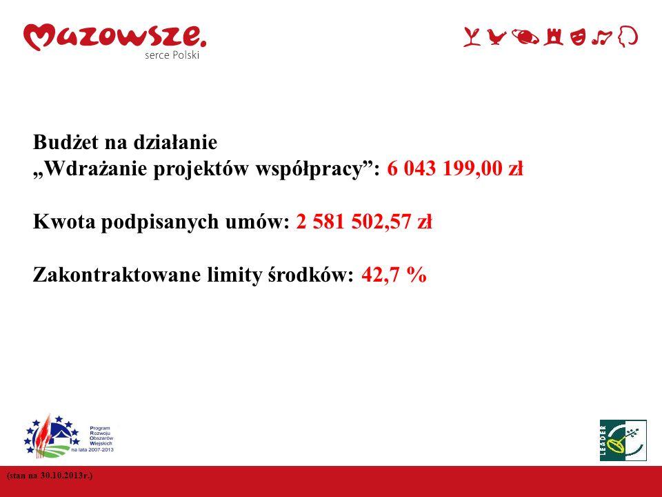 (stan na 30.10.2013r.) Budżet na działanie Wdrażanie projektów współpracy: 6 043 199,00 zł Kwota podpisanych umów: 2 581 502,57 zł Zakontraktowane lim