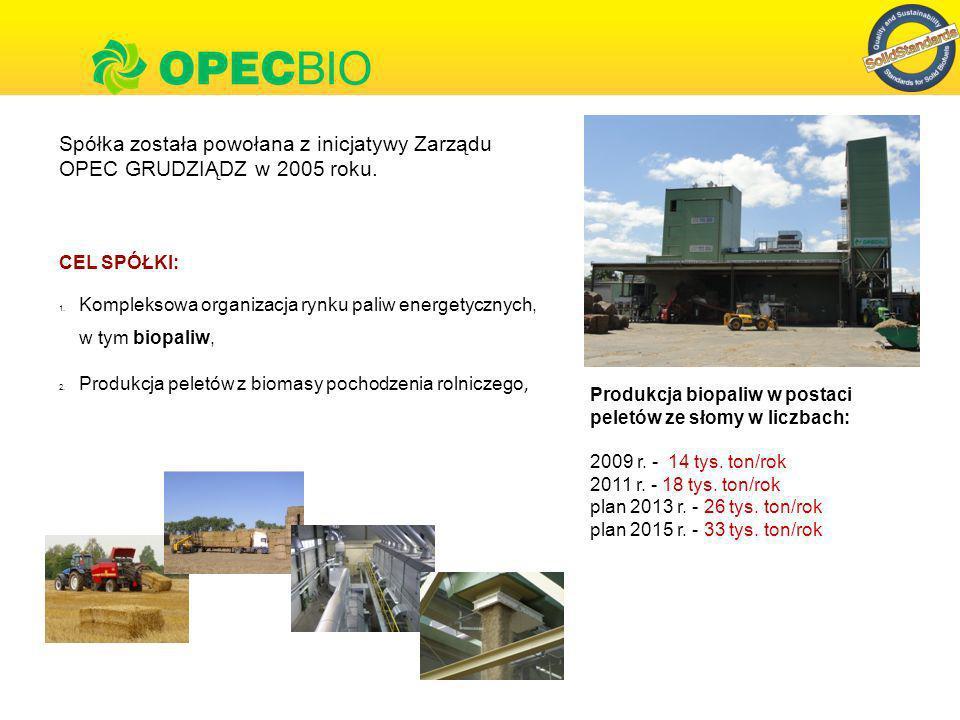 Norma EN 14961 5 EN 14961-1:2010 Biopaliwa stałe.Specyfikacje paliw i klasy.