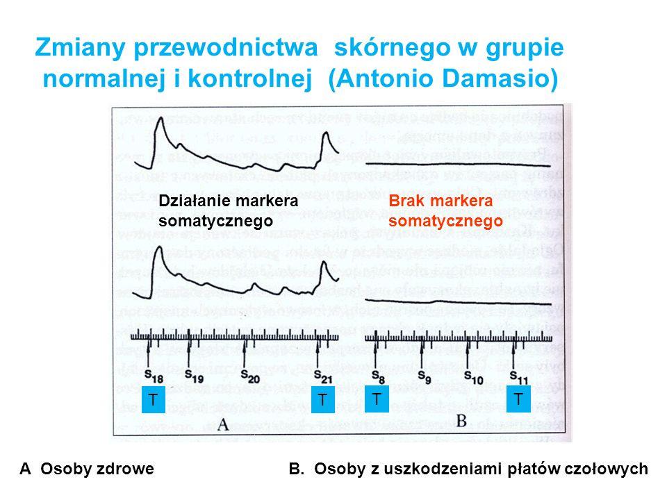 Zmiany przewodnictwa skórnego w grupie normalnej i kontrolnej (Antonio Damasio) A Osoby zdrowe B. Osoby z uszkodzeniami płatów czołowych Działanie mar