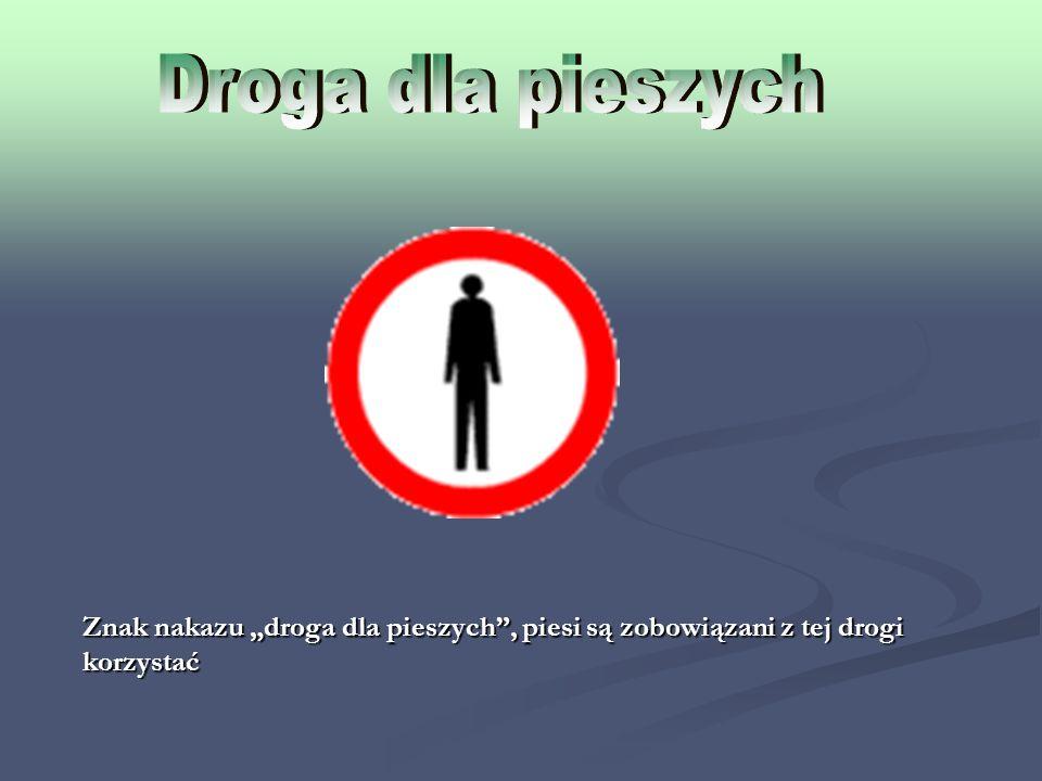 Znak nakazu droga dla pieszych, piesi są zobowiązani z tej drogi korzystać