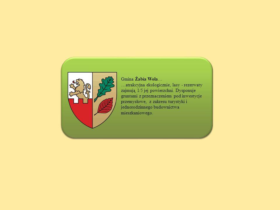 Gmina Żabia Wola… …atrakcyjna ekologicznie, lasy - rezerwaty zajmują 1/5 jej powierzchni. Dysponuje gruntami z przeznaczeniem pod inwestycje przemysło