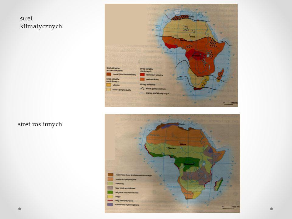 Podróżując wzdłuż południka 20 0 E w Afryce zwróciliśmy uwagę na to, że istnieją bardzo zbliżone warunki na obszarach położonych na półkuli północnej i południowej np.