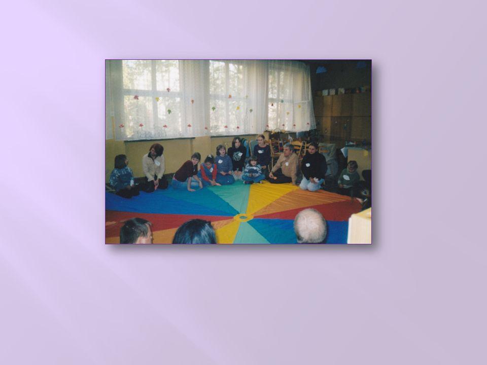STOWARZYSZENIE MŁODZIEŻY I OSÓB Z PROBLEMAMI PSYCHICZNYMI, ICH RODZIN I PRZYJACIÓŁ POMOST OKRES WSPÓŁPRACY LUTY 2010 - CZERWIEC 2011 Nauczyciel – opiekun: Marta Broniarczyk