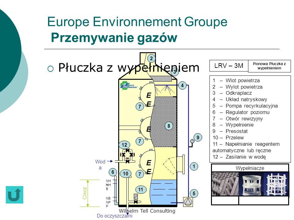 Wilhelm Tell Consulting Europe Environnement Groupe Przemywanie gazów Płuczka z wypełnieniem