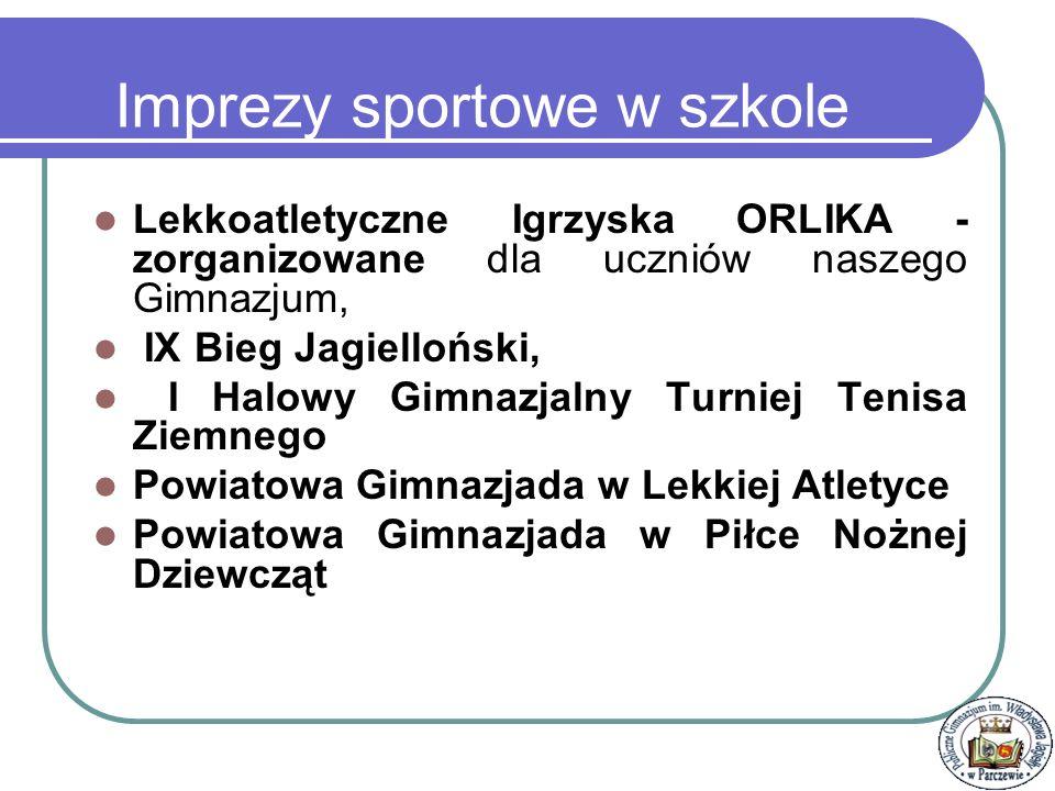 Powiatowe Zawody Szachistów - II miejsce w powiecie p. R. Matysiewicz Osiągnięcia Sportowe