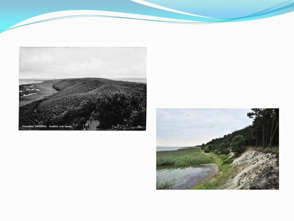 Wydma Wielbłądzi Garb (48,5 m. n.p.m.) Wielbłądzi Garb (48,5 m n. p. m) to najwyższe wzniesienie na Mierzei Wiślanej, z którego roztacza się wspaniały