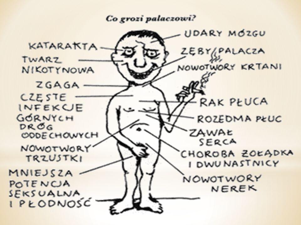 * Układ moczowy- palenie tytoniu może powodować raka pęcherza moczowego.