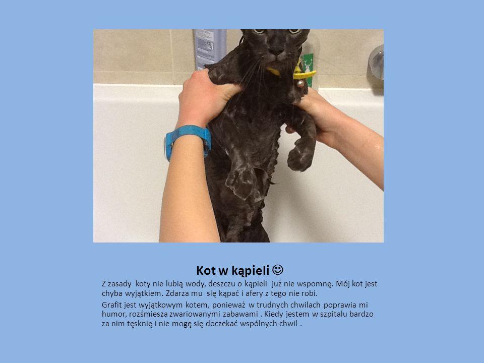 Kot w kąpieli Z zasady koty nie lubią wody, deszczu o kąpieli już nie wspomnę. Mój kot jest chyba wyjątkiem. Zdarza mu się kąpać i afery z tego nie ro