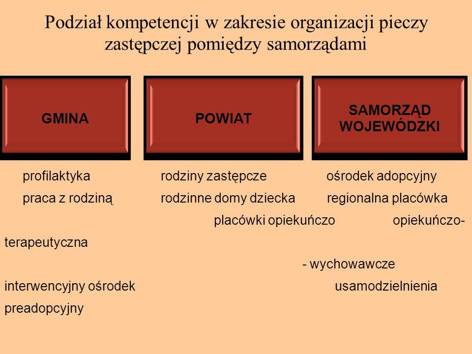 Podział kompetencji w zakresie organizacji pieczy zastępczej pomiędzy samorządami profilaktyka rodziny zastępcze ośrodek adopcyjny praca z rodziną rod