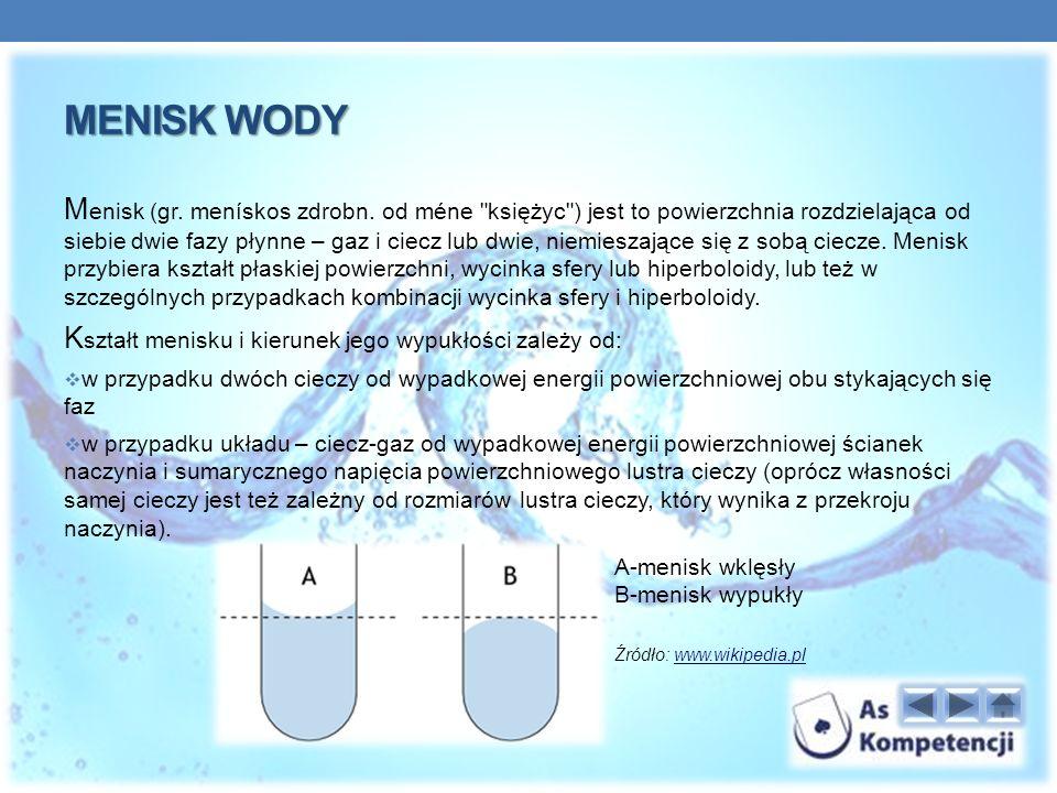 MENISK WODY M enisk (gr.menískos zdrobn.