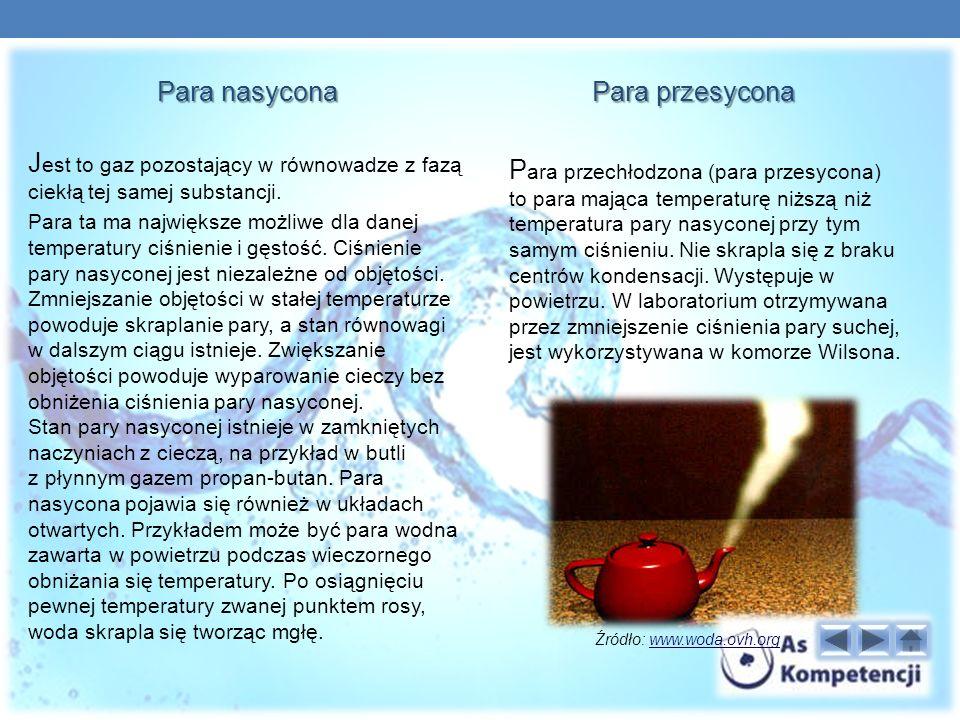 Para nasycona J est to gaz pozostający w równowadze z fazą ciekłą tej samej substancji.