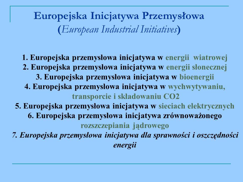 Europejska Inicjatywa Przemysłowa (European Industrial Initiatives) 1.