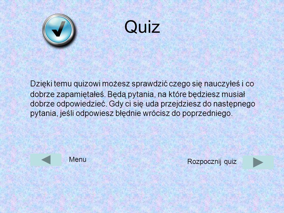 Quiz Dzięki temu quizowi możesz sprawdzić czego się nauczyłeś i co dobrze zapamiętałeś.