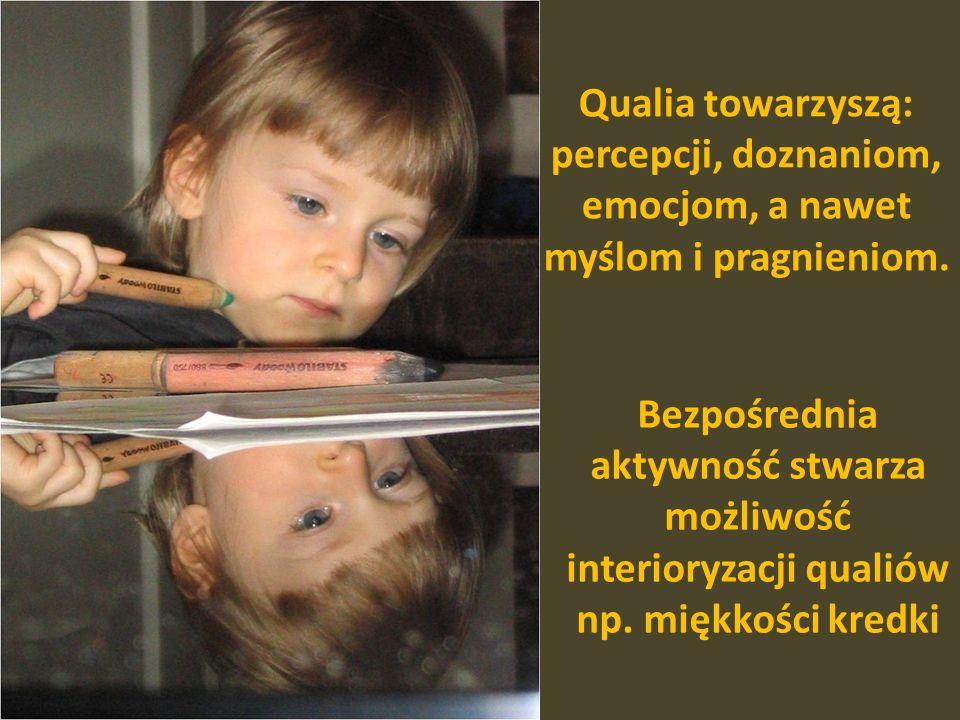 Qualia towarzyszą: percepcji, doznaniom, emocjom, a nawet myślom i pragnieniom.
