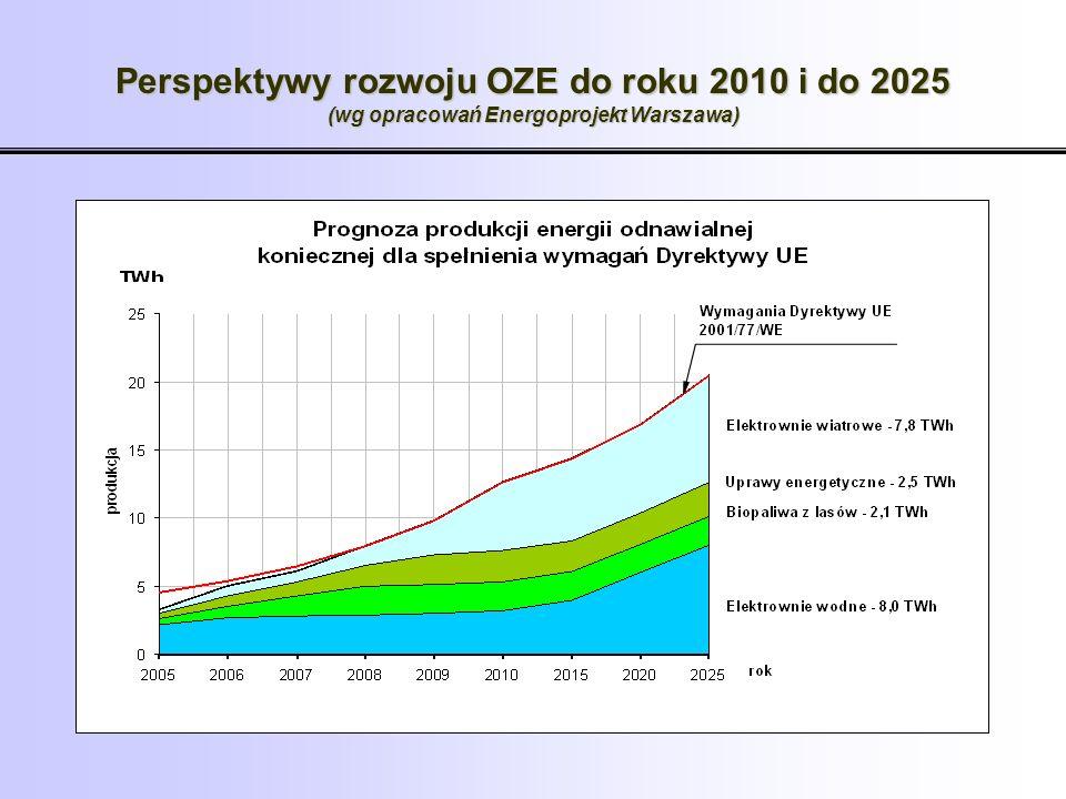 Perspektywy rozwoju OZE do roku 2010 i do 2025 (wg opracowań Energoprojekt Warszawa)