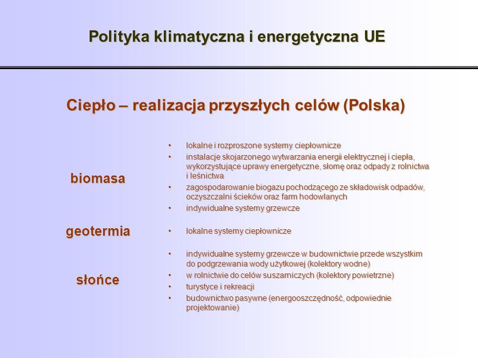 Polityka klimatyczna i energetyczna UE Ciepło – realizacja przyszłych celów (Polska) lokalne i rozproszone systemy ciepłowniczelokalne i rozproszone s