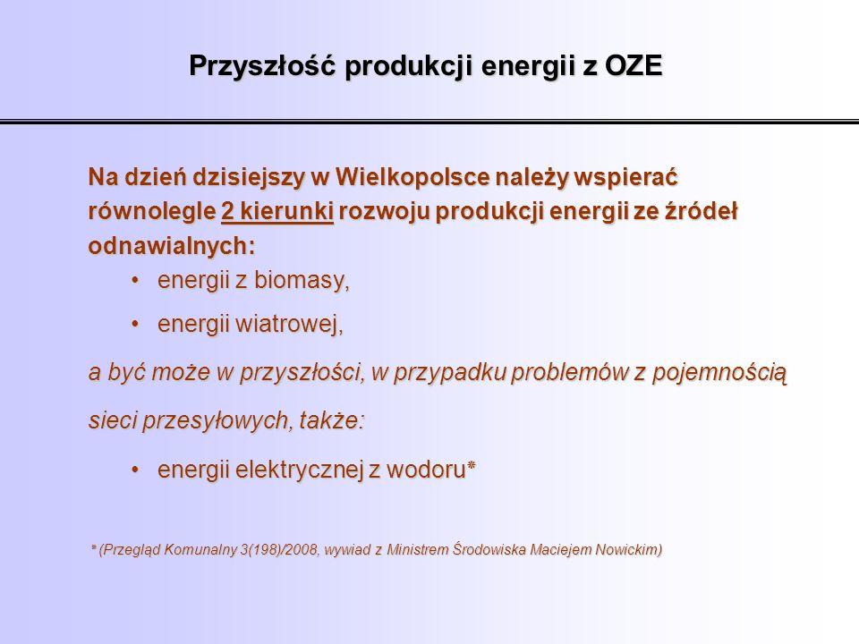 Przyszłość produkcji energii z OZE Na dzień dzisiejszy w Wielkopolsce należy wspierać równolegle 2 kierunki rozwoju produkcji energii ze źródeł odnawi