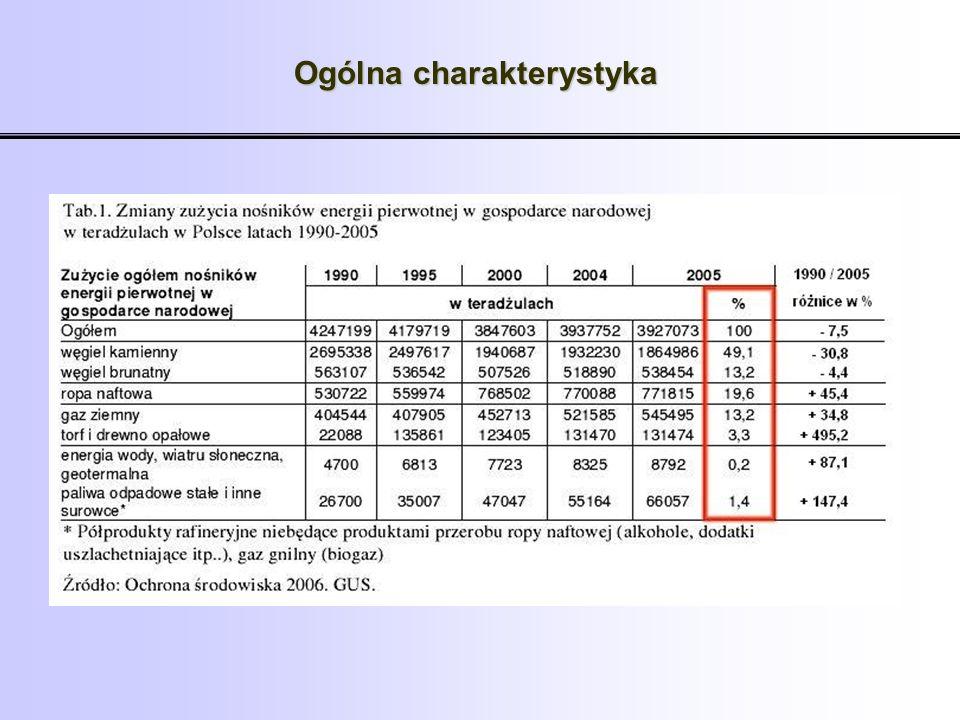 Udział energii z OZE w bilansie produkcji energii pierwotnej w Polsce w 2006 r.