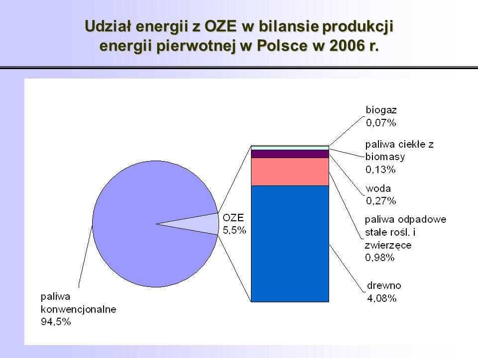 Udział nośników energii i paliw z OZE w produkcji energii pierwotnej w 2006 r.