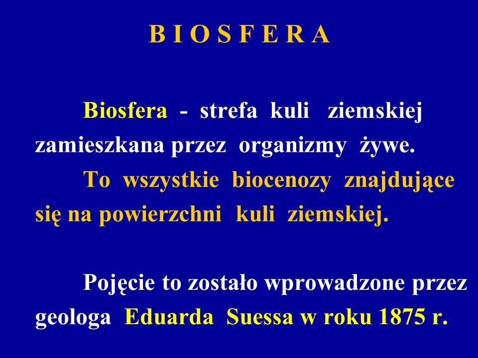 B I O S F E R A Biosfera - strefa kuli ziemskiej zamieszkana przez organizmy żywe. To wszystkie biocenozy znajdujące się na powierzchni kuli ziemskiej