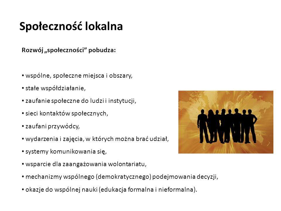 Rozwój społeczności pobudza: wspólne, społeczne miejsca i obszary, stałe współdziałanie, zaufanie społeczne do ludzi i instytucji, sieci kontaktów społecznych, zaufani przywódcy, wydarzenia i zajęcia, w których można brać udział, systemy komunikowania się, wsparcie dla zaangażowania wolontariatu, mechanizmy wspólnego (demokratycznego) podejmowania decyzji, okazje do wspólnej nauki (edukacja formalna i nieformalna).