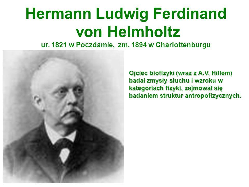 Hermann Ludwig Ferdinand von Helmholtz ur. 1821 w Poczdamie, zm. 1894 w Charlottenburgu Ojciec biofizyki (wraz z A.V. Hillem) badał zmysły słuchu i wz