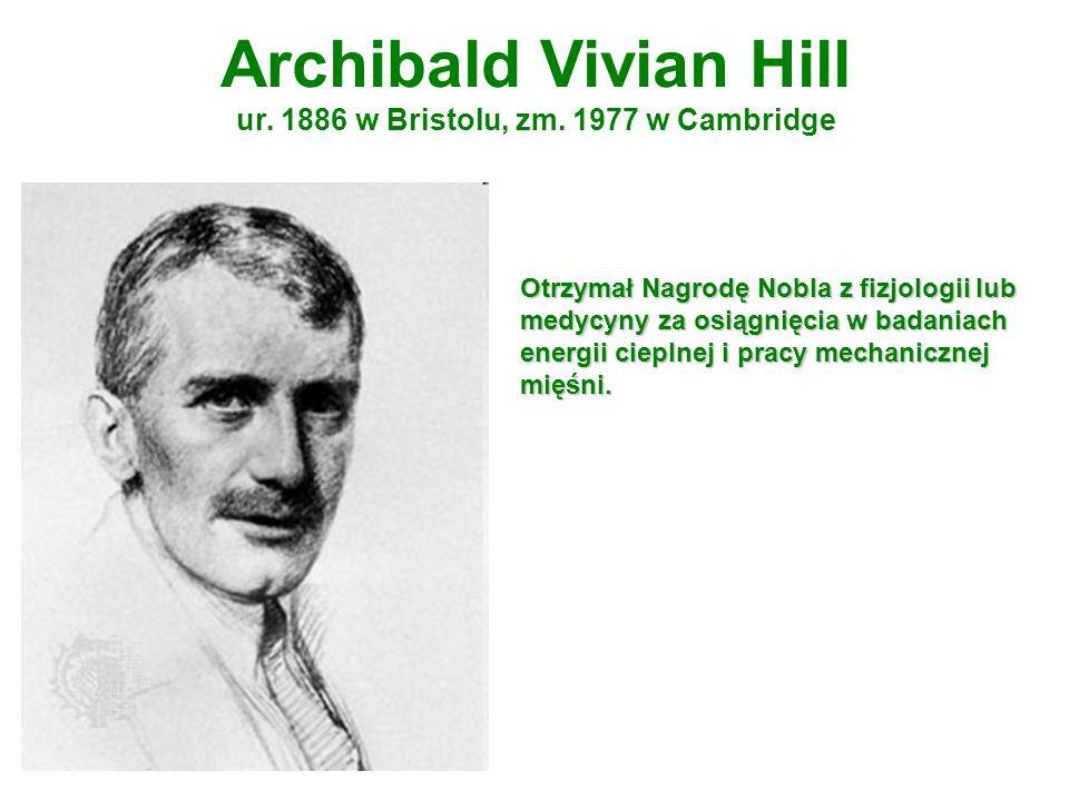 Archibald Vivian Hill ur. 1886 w Bristolu, zm. 1977 w Cambridge Otrzymał Nagrodę Nobla z fizjologii lub medycyny za osiągnięcia w badaniach energii ci