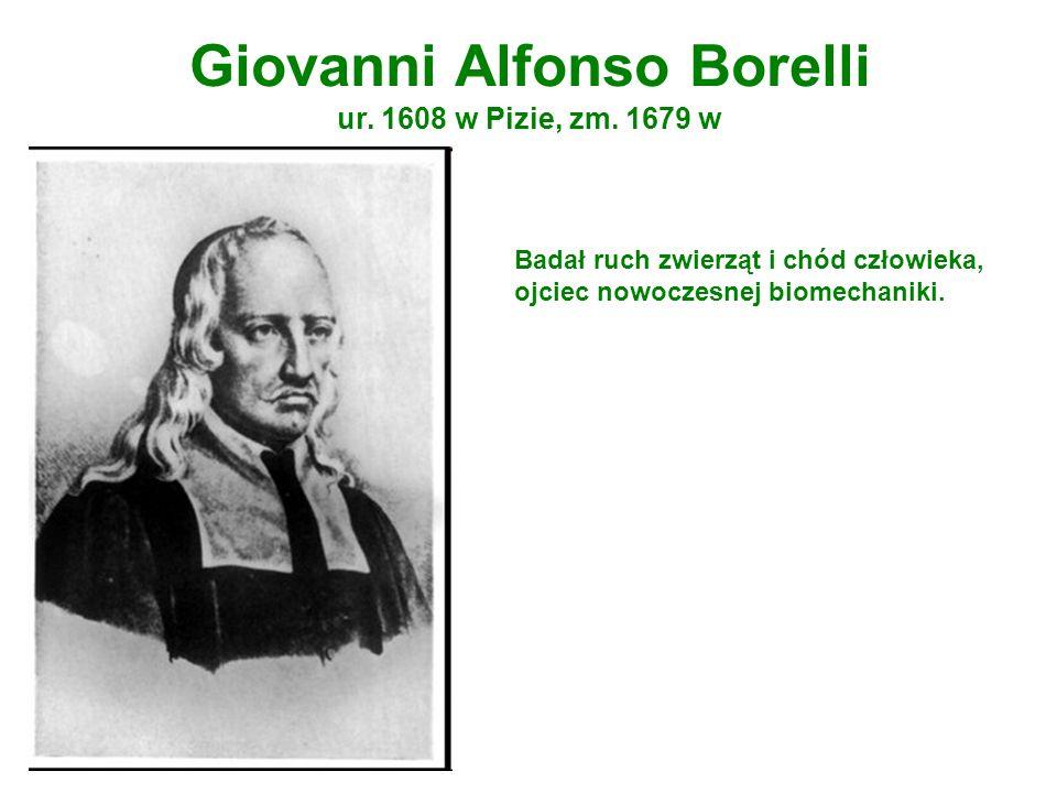 Giovanni Alfonso Borelli ur. 1608 w Pizie, zm. 1679 w Badał ruch zwierząt i chód człowieka, ojciec nowoczesnej biomechaniki.