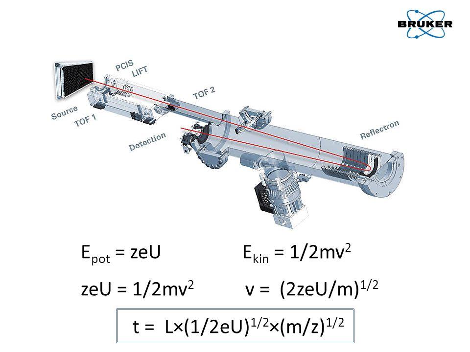 E pot = zeU E kin = 1/2mv 2 zeU = 1/2mv 2 v = (2zeU/m) 1/2 t = L×(1/2eU) 1/2 ×(m/z) 1/2