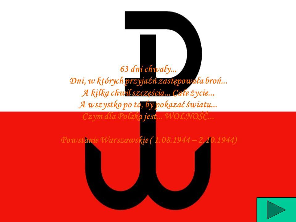 Przyczyny powstania Wybuch powstania Zasięg powstania Przebieg powstania Skutki powstania Siły i straty Jednostki polskie Dowódcy powstania Uzbrojenie Czy wziąłbyś udział w powstaniu .