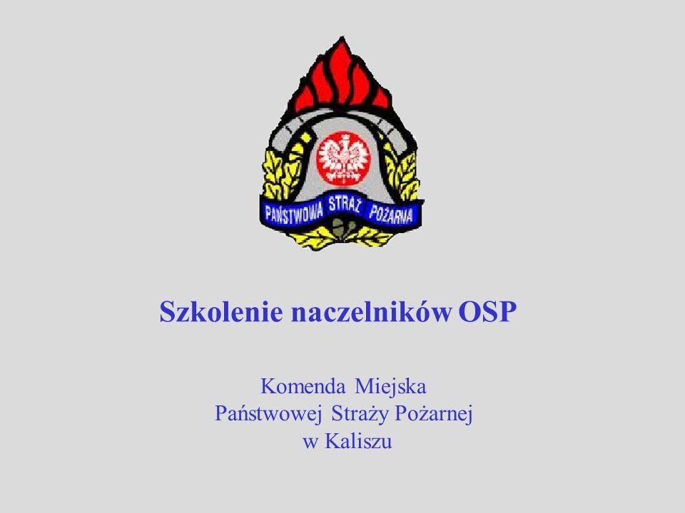 Komenda Miejska Państwowej Straży Pożarnej w Kaliszu Szkolenie naczelników OSP