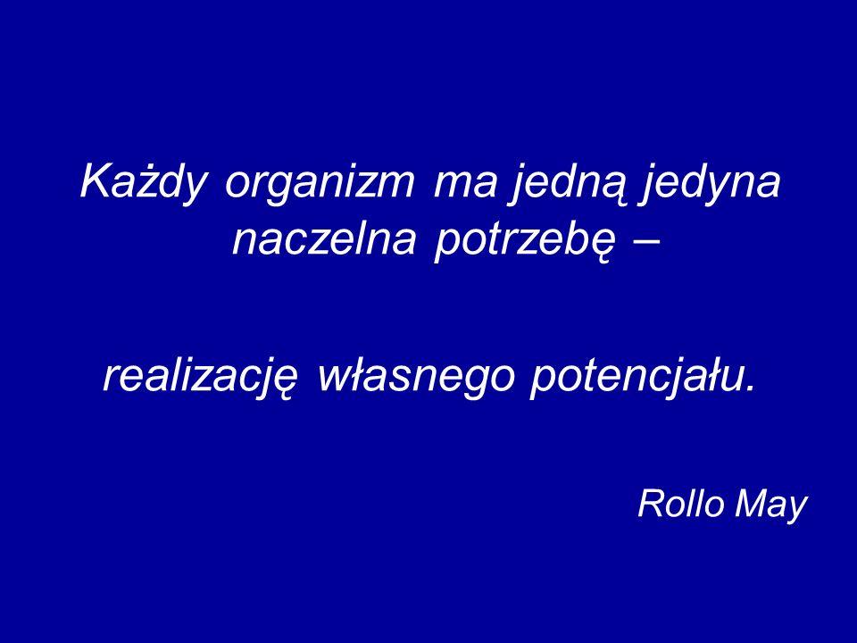 DZIĘKUJĘ ZA UWAGĘ katarzyna.ponikowska@us.edu.pl
