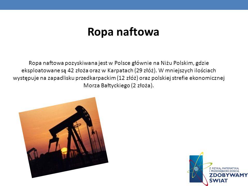 Ropa naftowa pozyskiwana jest w Polsce głównie na Niżu Polskim, gdzie eksploatowane są 42 złoża oraz w Karpatach (29 złóż). W mniejszych ilościach wys