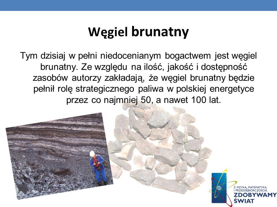 Węgiel brunatny Tym dzisiaj w pełni niedocenianym bogactwem jest węgiel brunatny. Ze względu na ilość, jakość i dostępność zasobów autorzy zakładają,