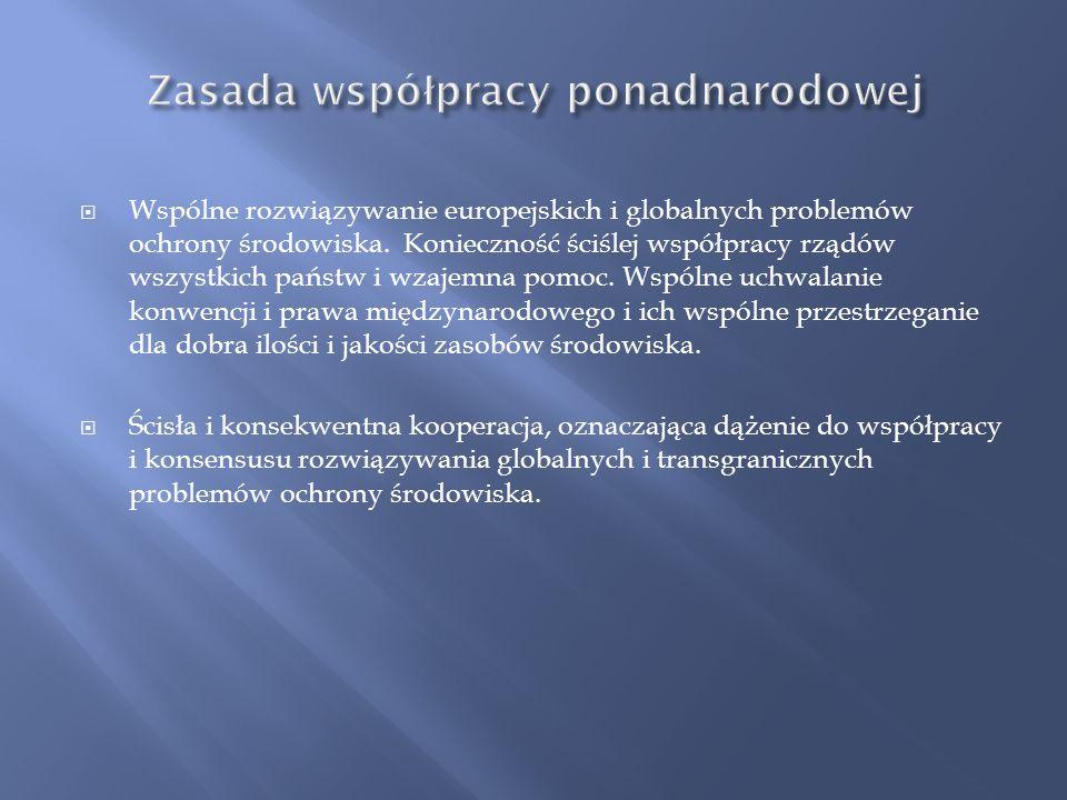 Zasada ekonomizacji = zasada efektywności ekonomicznej. Prowadzenie polityki ekologicznej w tai sposób, aby cele ekologiczne były osiągane minimalnym
