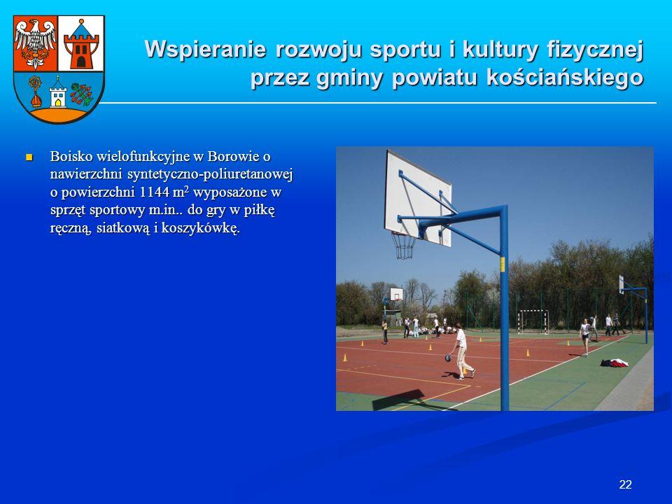 22 Boisko wielofunkcyjne w Borowie o nawierzchni syntetyczno-poliuretanowej o powierzchni 1144 m 2 wyposażone w sprzęt sportowy m.in.. do gry w piłkę
