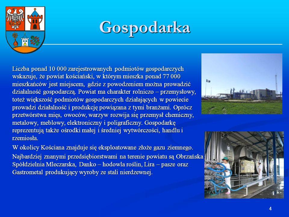 4 Gospodarka Liczba ponad 10 000 zarejestrowanych podmiotów gospodarczych wskazuje, że powiat kościański, w którym mieszka ponad 77 000 mieszkańców je