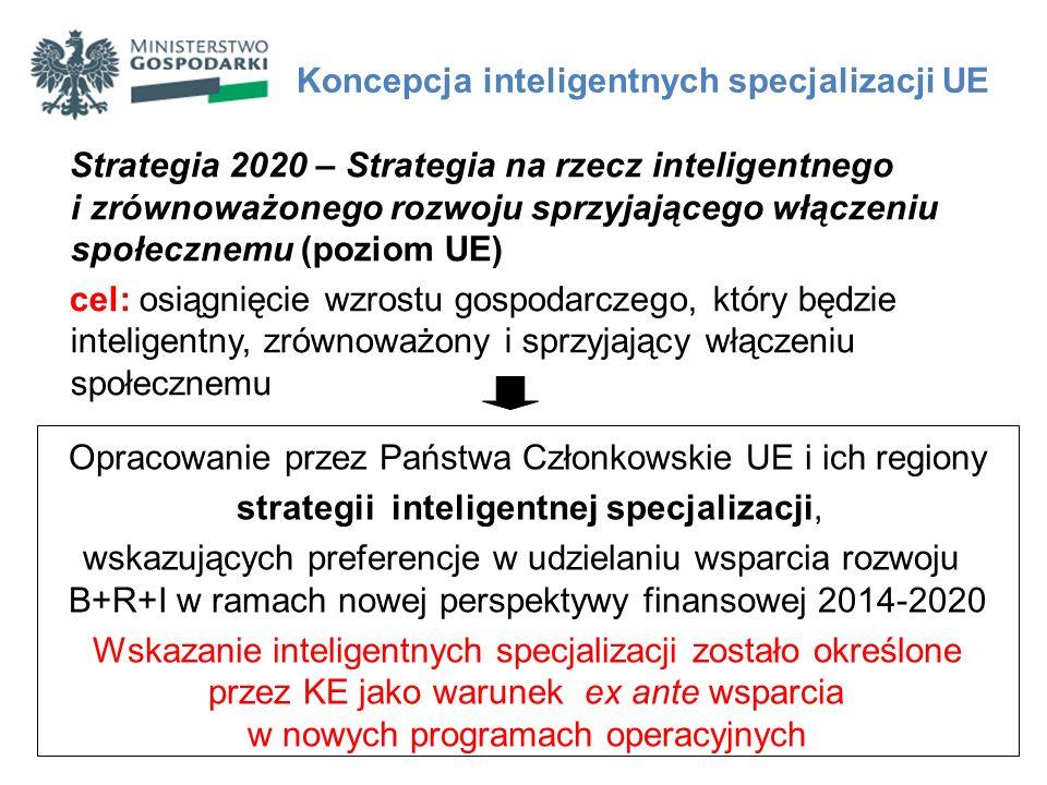 Efektem opracowania ram strategicznych na rzecz inteligentnej specjalizacji będzie wskazanie obszarów specjalizacji wraz z mechanizmem weryfikacji i aktualizacji tego wyboru w trakcie realizacji strategii.