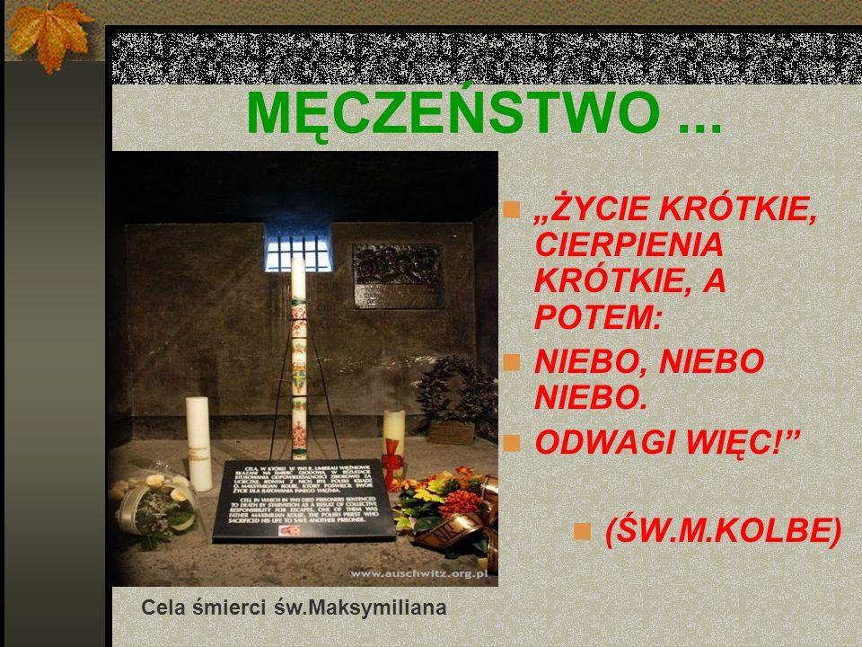 MĘCZEŃSTWO... ŻYCIE KRÓTKIE, CIERPIENIA KRÓTKIE, A POTEM: NIEBO, NIEBO NIEBO. ODWAGI WIĘC! (ŚW.M.KOLBE) Cela śmierci św.Maksymiliana
