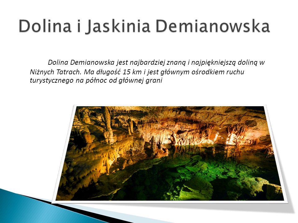 Dolina Demianowska jest najbardziej znaną i najpiękniejszą doliną w Niżnych Tatrach. Ma długość 15 km i jest głównym ośrodkiem ruchu turystycznego na