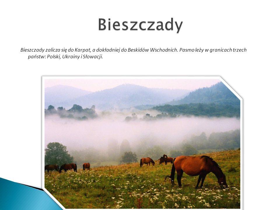 Bieszczady zalicza się do Karpat, a dokładniej do Beskidów Wschodnich. Pasmo leży w granicach trzech państw: Polski, Ukrainy i Słowacji.