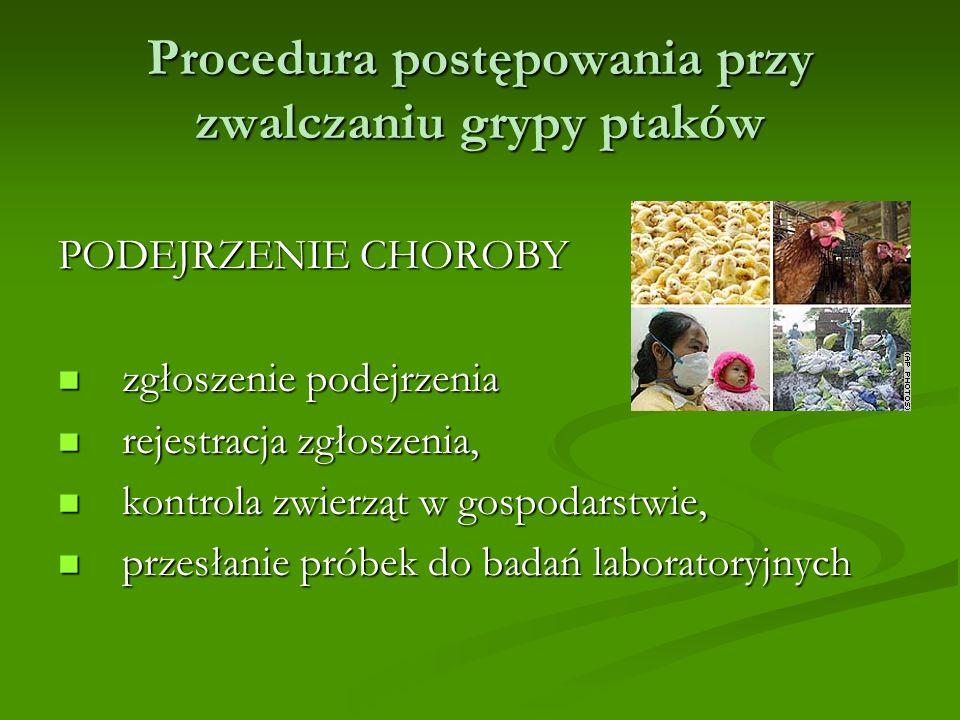 Procedura postępowania przy zwalczaniu grypy ptaków PODEJRZENIE CHOROBY zgłoszenie podejrzenia zgłoszenie podejrzenia rejestracja zgłoszenia, rejestracja zgłoszenia, kontrola zwierząt w gospodarstwie, kontrola zwierząt w gospodarstwie, przesłanie próbek do badań laboratoryjnych przesłanie próbek do badań laboratoryjnych