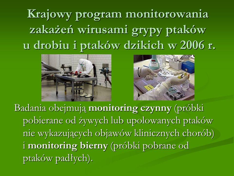 Krajowy program monitorowania zakażeń wirusami grypy ptaków u drobiu i ptaków dzikich w 2006 r.