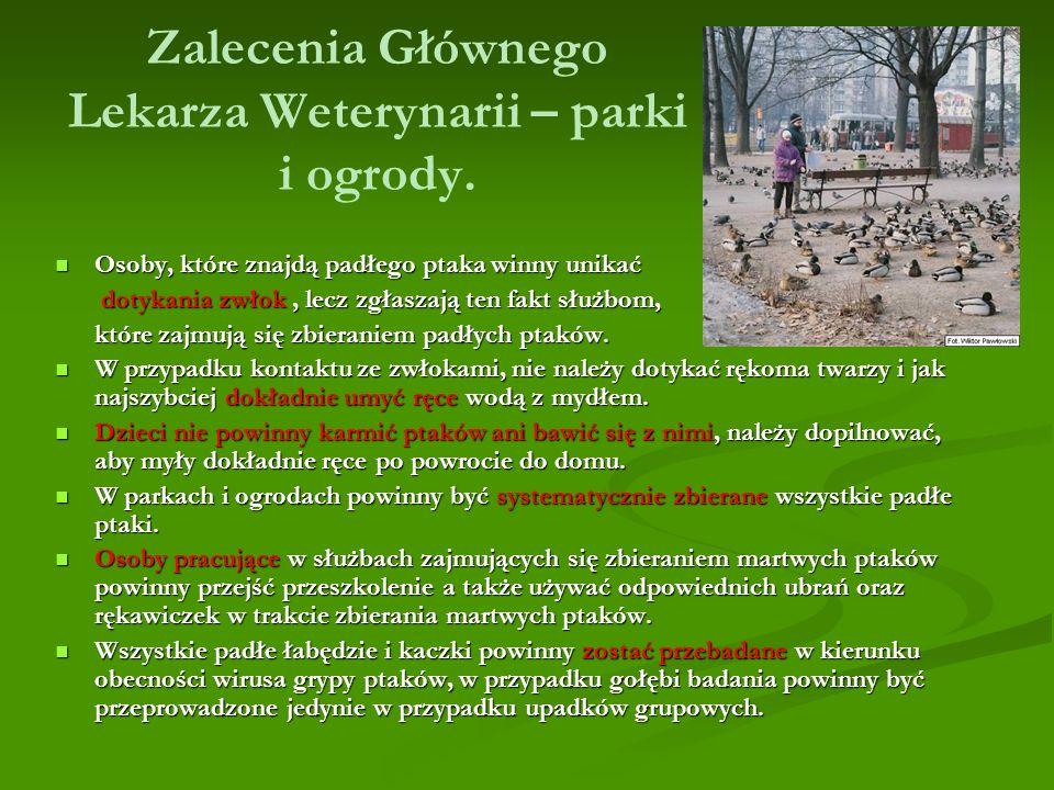 Zalecenia Głównego Lekarza Weterynarii – parki i ogrody.