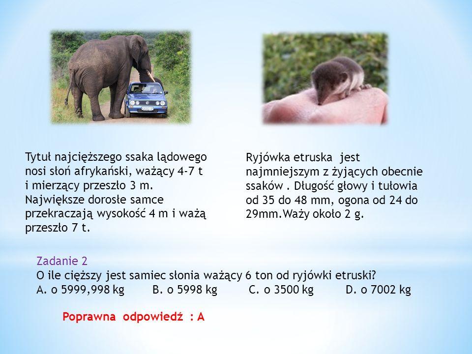 Tytuł najcięższego ssaka lądowego nosi słoń afrykański, ważący 4-7 t i mierzący przeszło 3 m.