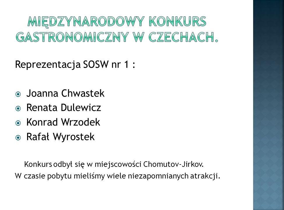 Reprezentacja SOSW nr 1 : Joanna Chwastek Renata Dulewicz Konrad Wrzodek Rafał Wyrostek Konkurs odbył się w miejscowości Chomutov-Jirkov.