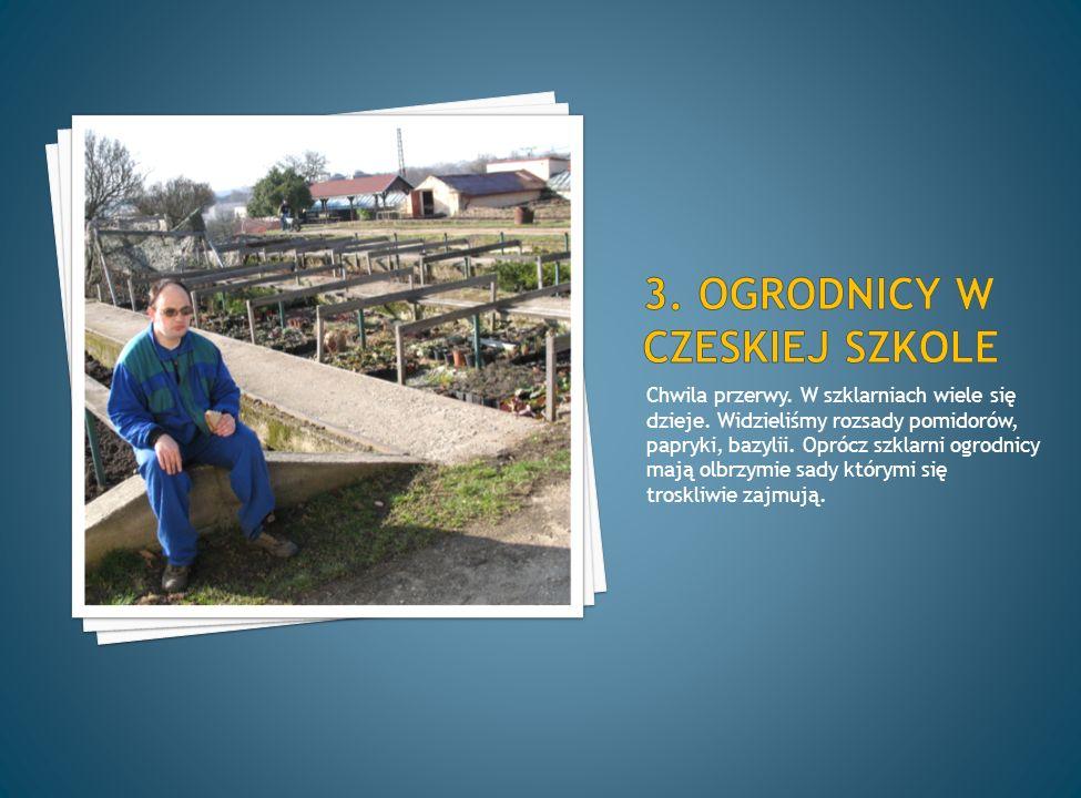 Jest miejscem koronacyjnym i grobowcem czeskich władców.