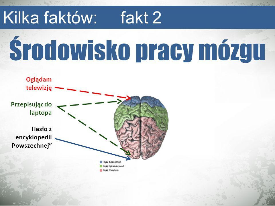 Środowisko pracy mózgu Kilka faktów: fakt 2 Oglądam telewizję Przepisując do laptopa Hasło z encyklopedii Powszechnej